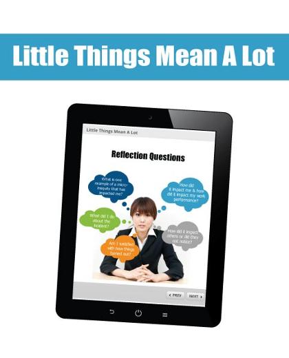 Little-Things-SCORM