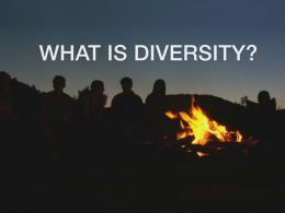 diversity-is-video