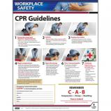 CPR Guidelines Instructional Chart / Poster