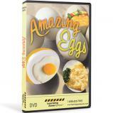 amazing-eggs